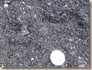 'ash or is it cinders' from the web at 'http://www.pavingexpert.com/images/aggs/ash_aggregate.jpg'