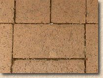 'chamferless paver' from the web at 'http://www.pavingexpert.com/images/blocks/clay_chamferless.jpg'