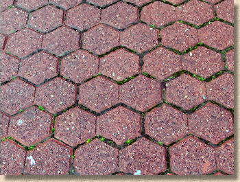 Double Hexagon Pavers