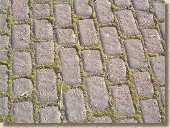 awful imitation setts