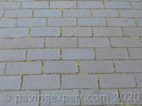 blue clay pavers