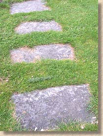stepping stones in turf