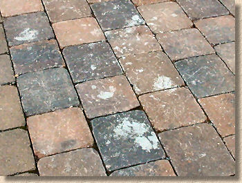 cement stained block paving