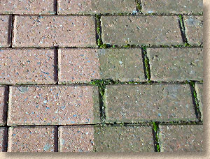 Pavingexpert - Paving maintenance and cleaning