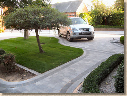 williams paving