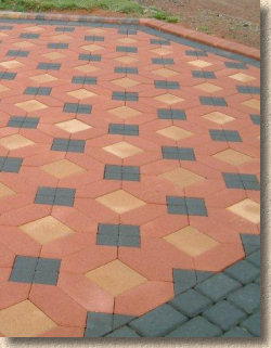 Paving Expert - News and Updates