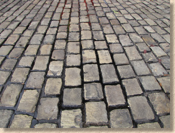 newly jointed setts