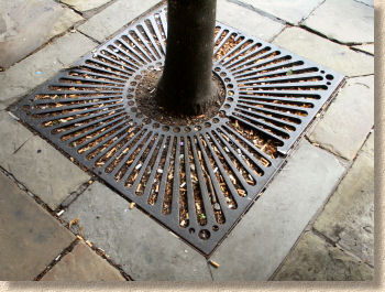 tree pit grille